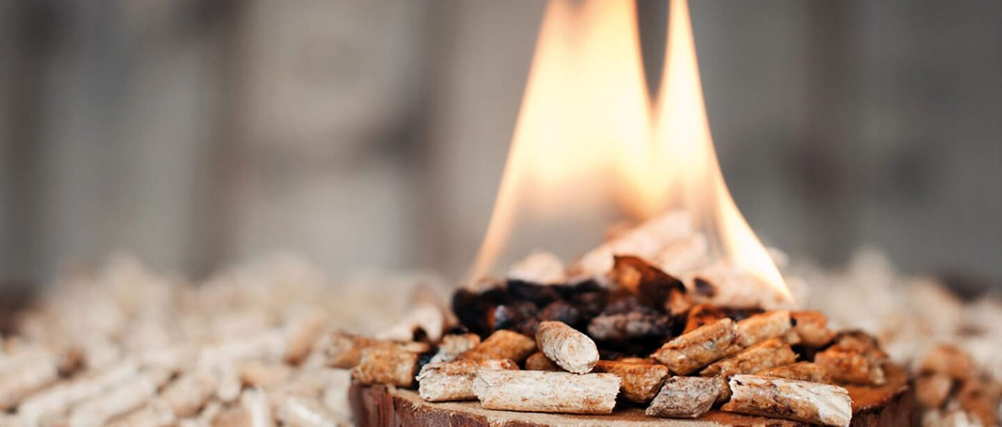 Living without gas through the use of torrefied biomass