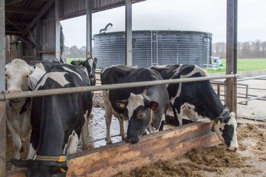 Biogas-HUB Noord-Deurningen