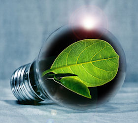 Green Energy Day – CO2 tax needed