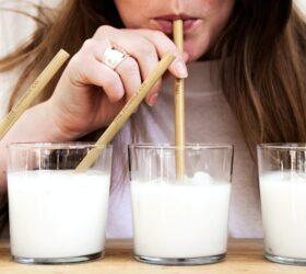 Blog: Hoe klimaatvriendelijk is dierlijke en plantaardige melk?